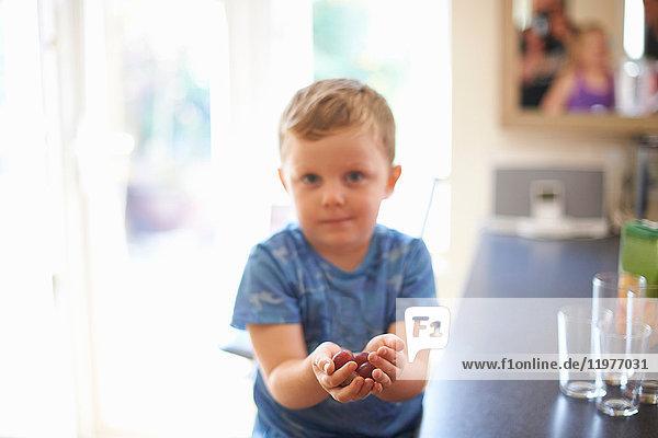 Porträt eines Jungen  der in der Küche eine Handvoll frischer Trauben hält