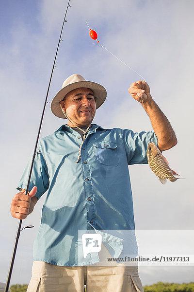 Mann hält Mangrovenschnapper