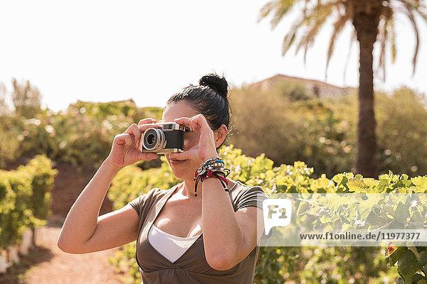 Mature female winemaker photographing in vineyard  Las Palmas  Gran Canaria  Spain