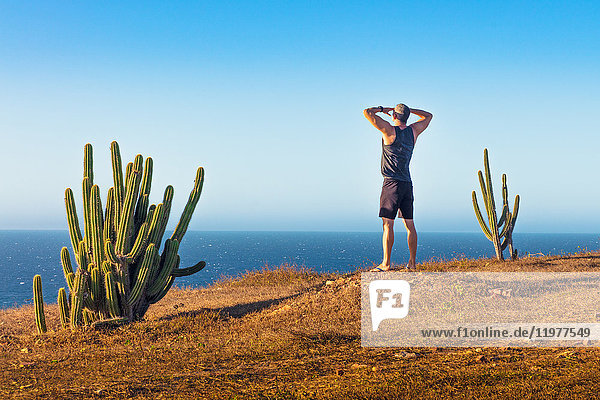 Mann auf dem Berggipfel stehend  Blick nach hinten  Rückansicht  Jericoacoara-Nationalpark  Ceara  Brasilien