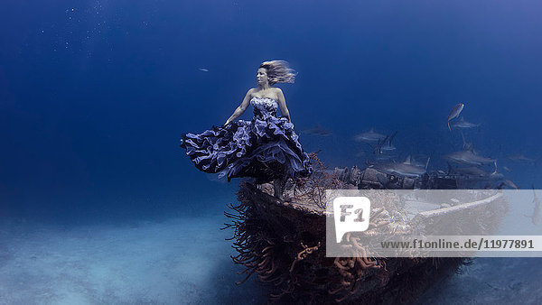Underwater view of woman in purple dress poised by shipwrecked boat  Bahamas