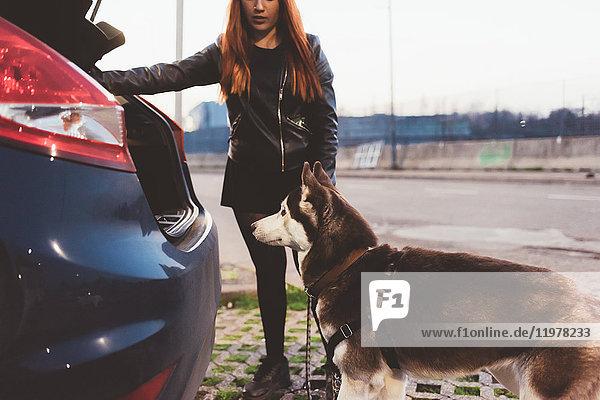 Frau überredet Hund in den Kofferraum