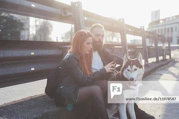 Paar sitzt mit Hund und schaut auf Smartphone