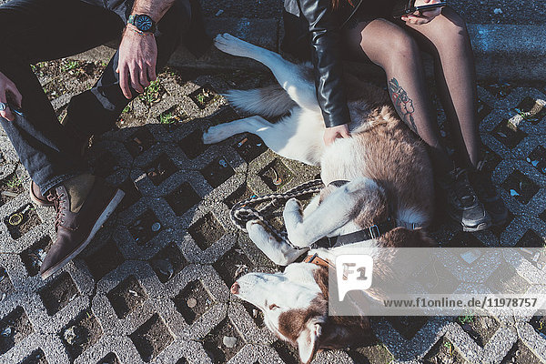 Schrägansicht eines mit Hund sitzenden Paares