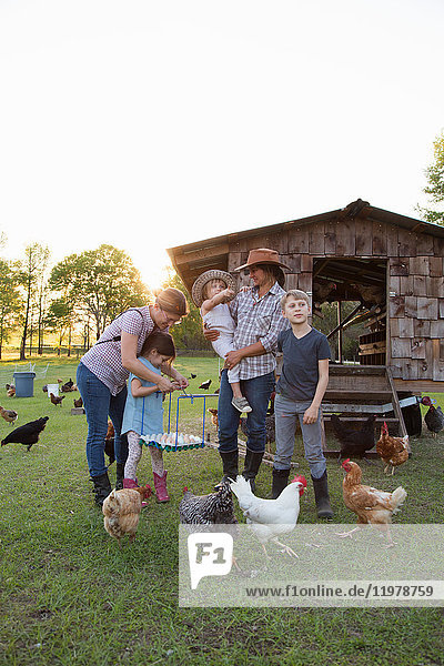 Family on farm  surrounded by chickens  mother and daughter holding tray of fresh eggs