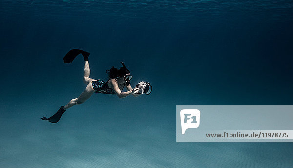 Underwater view of female free diver with underwater camera  Bimini  Bahamas