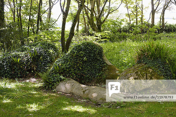 UK  England  Cornwall  The Lost Gardens of Heligan  sculpture The Mud Maid by Susan Hill