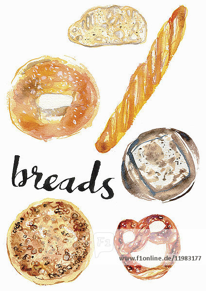 Aquarell von verschiedenen Broten
