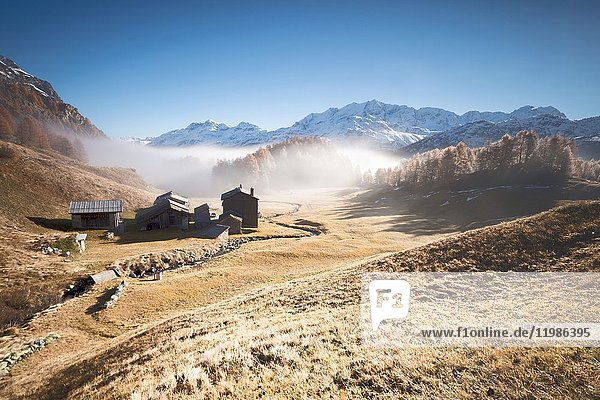 Morning fog on the mountain huts of Buaira framed by snowy peaks Sils Maloja Canton of Graubünden Engadine Switzerland Europe.