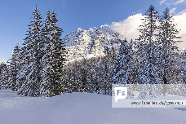 Europe  Italy  Veneto  Belluno. San Sebastiano mountain in winter  municipality of La Valle Agordina  Dolomites.