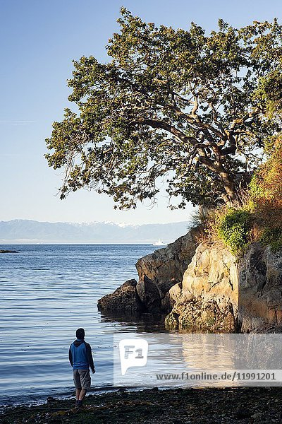 View from Saxe Point Park - Esquimalt  Victoria  Vancouver Island  British Columbia  Canada.