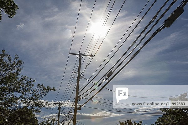 Telephone pole and wires backlit by the sun.