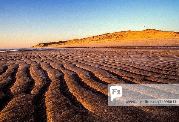 Beach on Cape Cod Bay  Truro