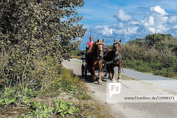 Hook of Holland  Netherlands. Horse pulled coach and drivers recreating in the dunes at the North Sea coast.