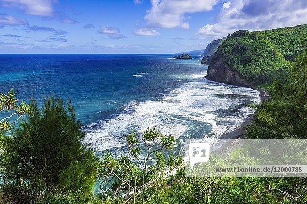 Pololu Valley and beach  North Kohala  The Big Island  Hawaii USA.