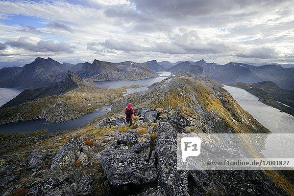 Norway  Troms County  north of the Arctic Circle  Senja island between Tromso and the Lofoten islands  trek to the summit of Roalden (862m)