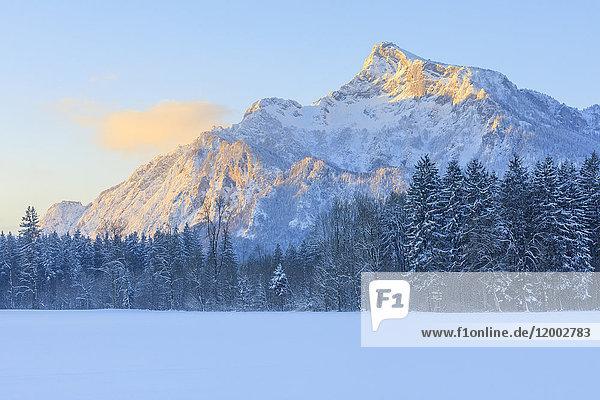 Untersberg im Winter  Berchtesgadener Alpen  Salzburger Land  Österreich  Europa