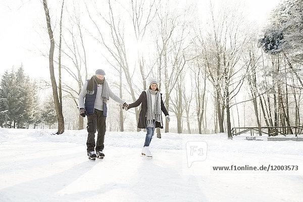 Seniorenpaar Eislaufen
