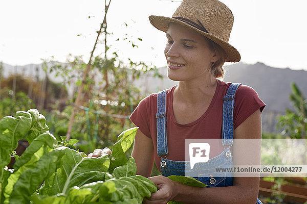 Porträt eines lächelnden Bauern mit Strohhut