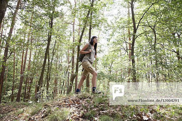Junge Frau mit Rucksack auf Wanderung im Wald