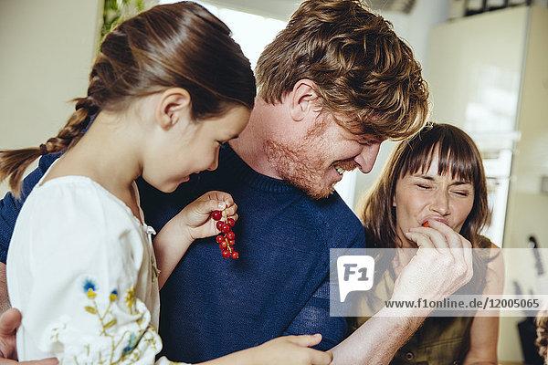 Eltern und Tochter bei der Verkostung von Johannisbeeren