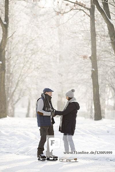 Seniorenpaar mit Schlittschuhen auf dem zugefrorenen See