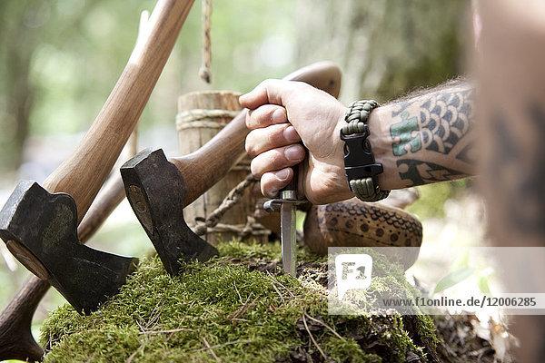 Äxte  Baumstumpf und Handmesser im Wald