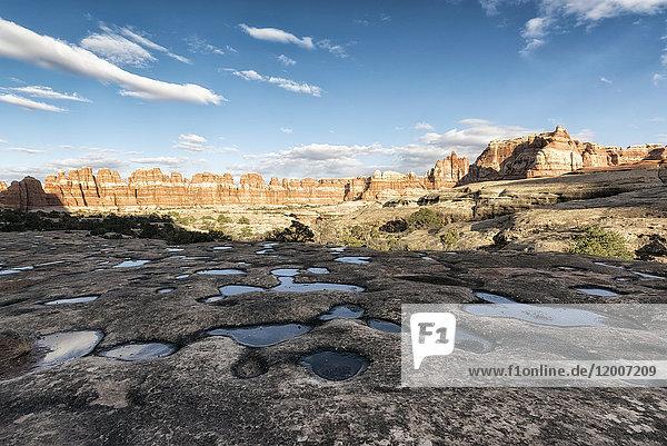 Puddles in desert  Moab  Utah  United States