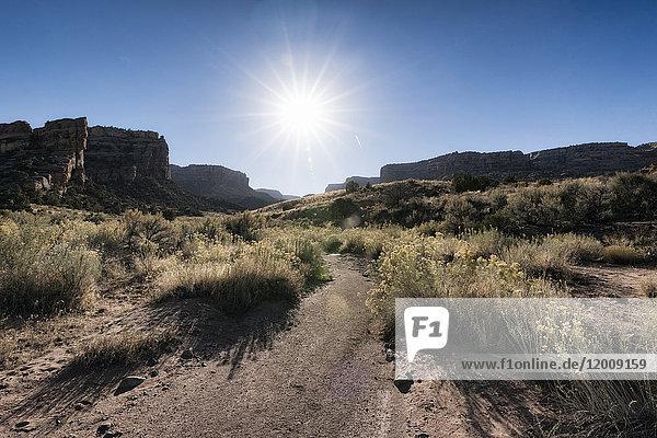 Sun in blue sky over desert path