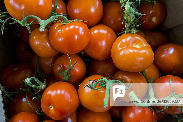 Pile of tomatoes on stems