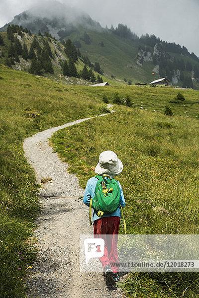 Rückansicht des Jungen auf dem Bergweg  Wildberg  Schweiz