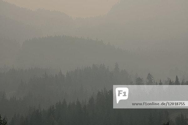 Idyllische Aufnahme des Berges bei nebligem Wetter  Britania  Kanada  British Columbia Idyllische Aufnahme des Berges bei nebligem Wetter, Britania, Kanada, British Columbia
