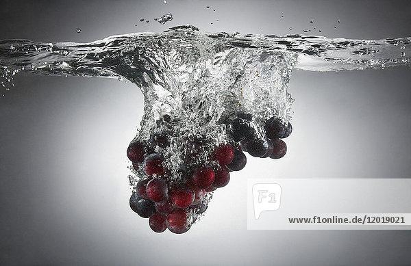 Nahaufnahme der Trauben im Spritzwasser