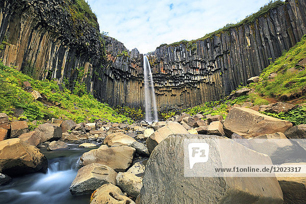 Iceland  Sudurland. Svartifoss waterfall.