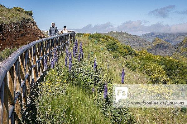 Lookout  Miradouro do paredao  Madeira  Portugal.