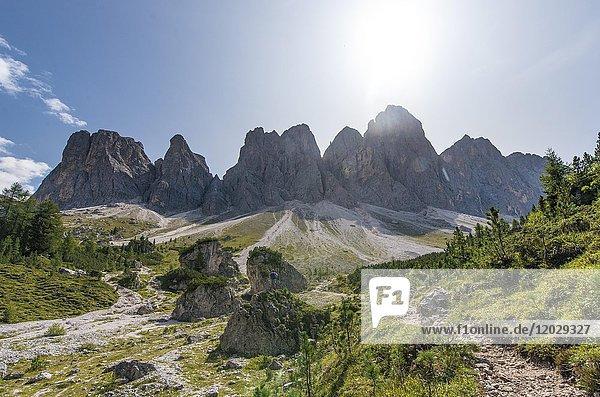 Geislerspitzen im Villnösstal  Wanderweg zur Geisleralm  hinten die Geislergruppe  Sass Rigais  Dolomiten  Südtirol  Italien  Europa