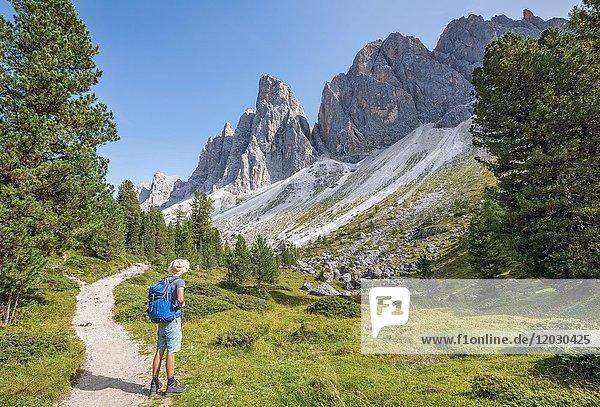 Wanderer auf dem Wanderweg zur Geisler Alm  Villnösstal unterhalb der Geislerspitzen  hinten die Geislergruppe  Sass Rigais  Dolomiten  Südtirol  Italien  Europa