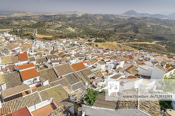 View over the white village  Olvera  province of Cadiz  Andalusia  Spain  Europe