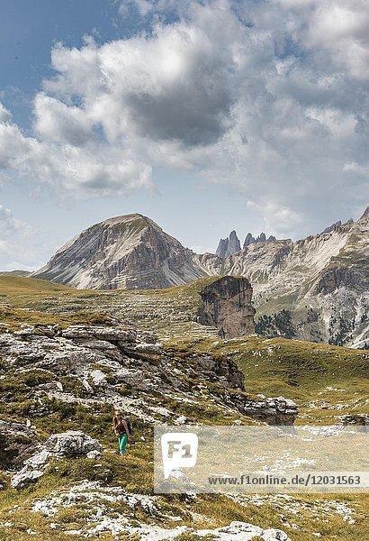 Felsklippen  hinten Col de La Pieres und Geislerspitzen  Naturpark Puez-Geisler  Dolomiten  Selva di Val Gardena  Südtirol  Trentino-Alto Adige  Italien  Europa
