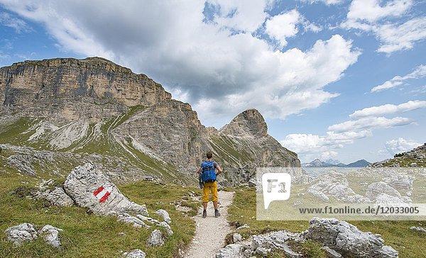 Wanderer auf dem Rundwanderweg um die Sella Gruppe  Grödner Joch  Passo Gardena  Naturpark Puez-Geisler  Dolomiten  Selva di Val Gardena  Südtirol  Trentino-Alto Adige  Italien  Europa