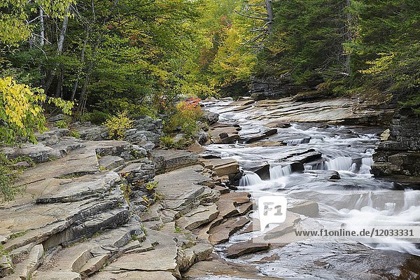 Lower Ammonoosuc Falls on the Ammonoosuc River in Carroll  New Hampshire during autumn months.