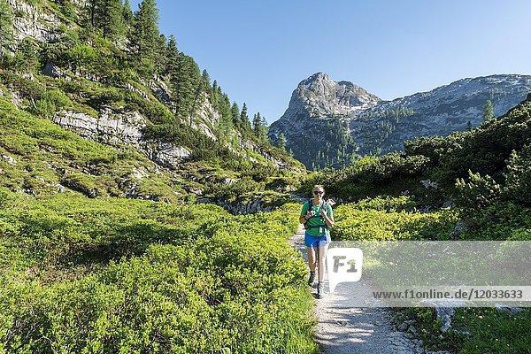 Wanderin auf Wanderweg zum Kärlingerhaus  Funtenseetauern  Nationalpark Berchtesgaden  Berchtesgadener Land  Oberbayern  Bayern  Deutschland  Europa