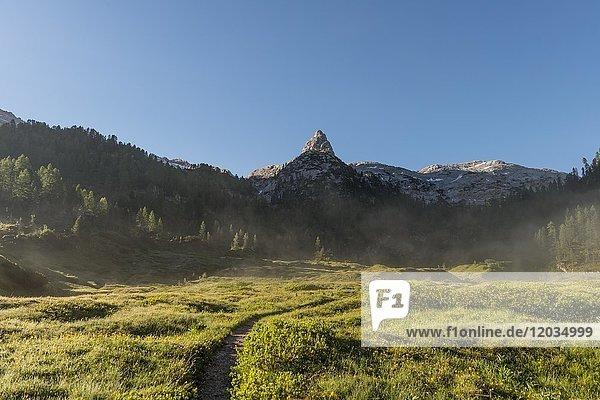 Morgenstimmung  Wanderweg zum Königssee und der Wasseralm  nahe dem Kärlinger Haus  hinten Viehkogel  Berchtesgadener Alpen  Nationalpark Berchtesgaden  Oberbayern  Bayern  Deutschland  Europa