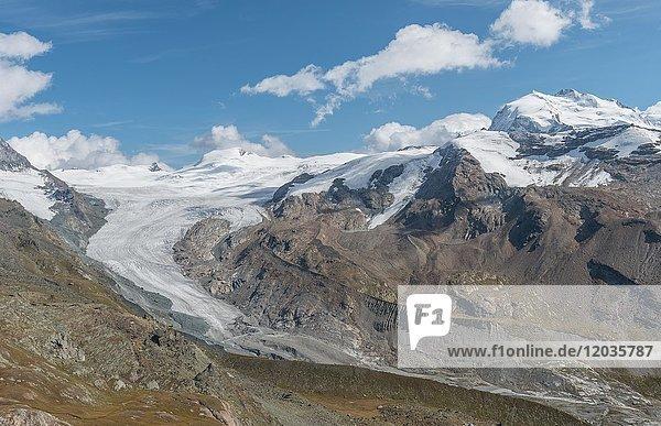Gletscherzunge  Blick vom Unterrothorn auf den Findelgletscher  Zermatt  Valais  Schweiz  Europa