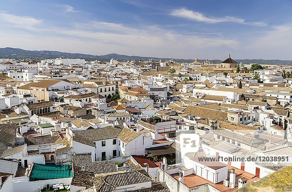 View of the Old Town  Cordoba  Andalusia  Spain  Europe