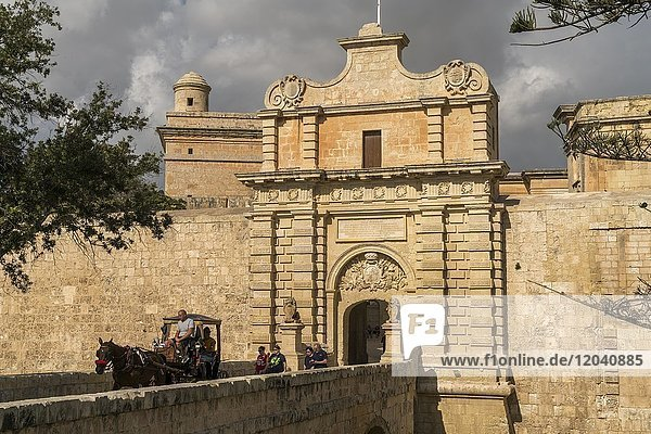 Horse-drawn carriage in front of city gate  Mdina  Malta  Europe