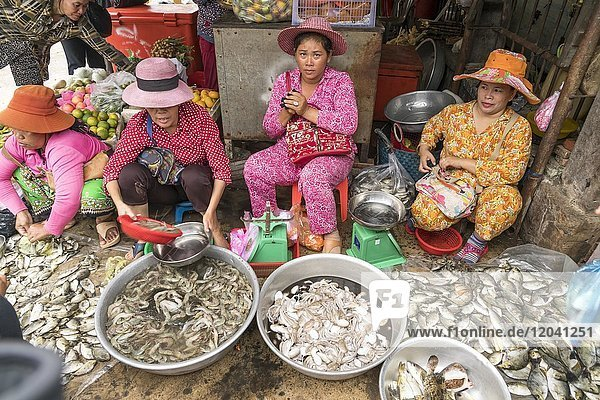 Women at the Fish Market in Kampot  Cambodia  Asia