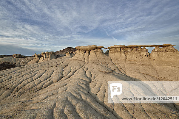 Badlands  Bisti Wilderness  New Mexico  United States of America  North America
