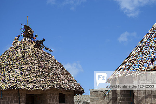 Men thatching the roof of a new house  Tanzania  East Africa  Africa