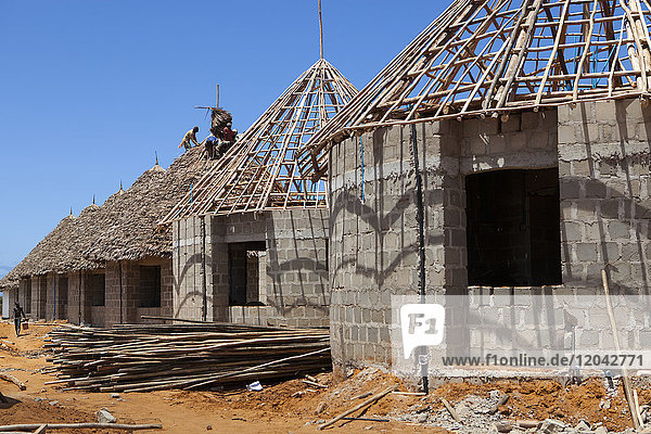 Men thatching the roofs of new houses  Mtwara  Tanzania  East Africa  Africa